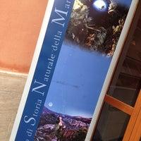 Foto scattata a Museo di Storia Naturale della Maremma da Elena M. il 8/2/2014
