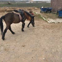 Photo taken at Lara Horse Clup Arena by Cenk O. on 3/26/2017