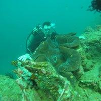Photo taken at Planet Dive Anilao by Eren K. on 2/20/2016