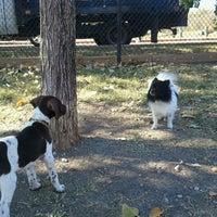 Photo taken at White Rock Lake Dog Park by Lupita R. on 11/25/2012