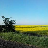 Photo taken at Мирне by Жанна on 5/13/2015