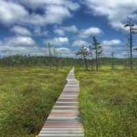 Photo taken at Saco Heath Preserve by Jason B. on 7/7/2015