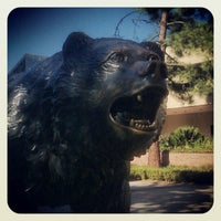 รูปภาพถ่ายที่ UCLA Bruin Statue โดย Ivy B. เมื่อ 12/22/2012