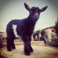Photo taken at The Belmont Goats by Mac P. on 10/2/2013
