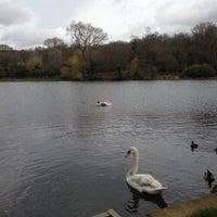 4/17/2013 tarihinde Rob F.ziyaretçi tarafından Hampstead Heath Ponds'de çekilen fotoğraf