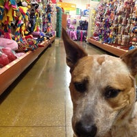 Photo taken at PetSmart by Anders P. on 10/22/2012