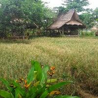 Photo taken at Restoran & Lesehan Alam Sari by Agustinus D. on 12/3/2013