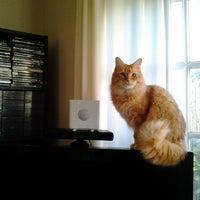 Photo taken at LisaLounge by Keifer M. on 12/19/2012