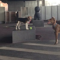 Photo taken at East River Esplanade South Dog Run by Ash B. on 6/22/2013