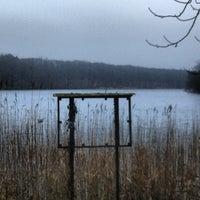Photo taken at S Schlachtensee by Dominik R. on 1/19/2014