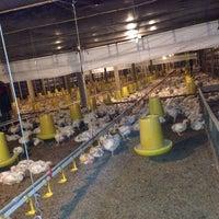 Photo taken at paon poultry farm by cipta w. on 7/13/2014