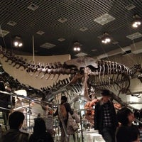 Photo prise au National Museum of Nature and Science par bogey27 le11/23/2012