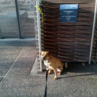 Photo taken at East River Esplanade South Dog Run by Meredith K. on 11/10/2012