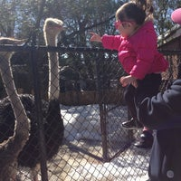 Photo taken at Staten Island Zoo by Yahaira A. on 2/22/2014