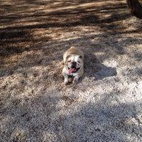 Photo taken at Πάρκο για σκυλιά by Sofia D. on 12/6/2014