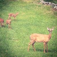Photo taken at Pennsylvania by Beth E. on 6/22/2014