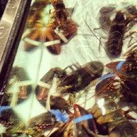 Das Foto wurde bei Red Lobster von Rick G. am 10/6/2012 aufgenommen