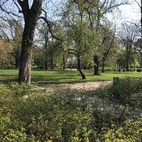 4/2/2017 tarihinde Rozalia F.ziyaretçi tarafından Gesztenyéskert'de çekilen fotoğraf