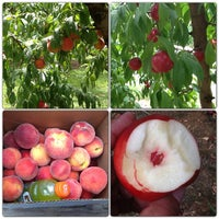 Photo taken at Huber's Orchard, Winery, & Vineyards by Angel J. on 7/27/2013