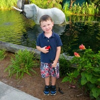 Photo taken at Jungle Rapids Family Fun Park by Dory K. on 8/3/2013