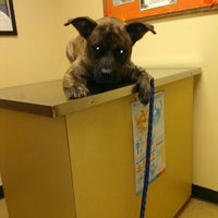 Photo taken at Lincolnway Animal Hospital by Becca S. on 10/17/2014