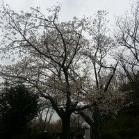 Photo taken at 源氏山公園 by Atsushi Y. on 3/23/2013