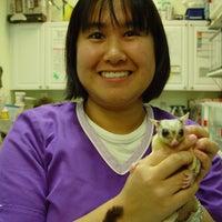 Photo taken at Chicago Exotics Animal Hospital by Chicago Exotics Animal Hospital on 11/27/2013