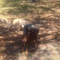 Photo taken at Al Lopez Dog Park by Katherine G. on 3/9/2014
