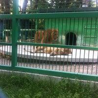 Photo taken at Зоокът by Aylin on 5/24/2015