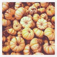 Photo taken at Kruger's Farm Market by Megan S. on 10/13/2012