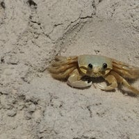 Foto tirada no(a) Praia de Canabrava por George C. em 10/23/2015