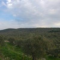 Photo taken at Murateli Köyü by Gökhan K. on 3/8/2016