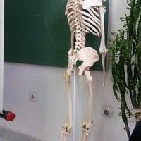 Photo taken at Институт за Анатомија / Institute for Anatomy by Dijana T. on 12/6/2013