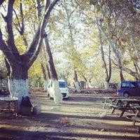 Photo taken at Degirmen piknik alani by Barış 👊 B. on 11/16/2014