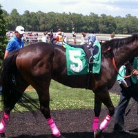 Photo taken at Tampa Bay Downs by DonnieTampa on 5/5/2012