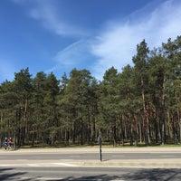 Photo taken at Vabaduse park by Katja M. on 5/14/2017