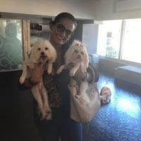 Photo taken at Metropolitan Dog Spa by Lica L. on 12/4/2016