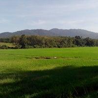 Photo taken at Parit Panjang by Hunny N. on 12/10/2014