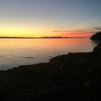 Photo taken at Lime Kiln Point State Park by Ellen K. on 8/25/2016