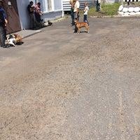 Photo taken at УФС по ветеринарному и фитосанитарному надзору by Businka on 6/11/2014