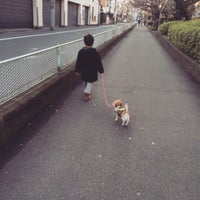 Photo taken at 蛇崩緑道 by 大城 崇. on 12/31/2014