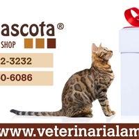 Photo taken at Veterinaria La Mascota by Veterinaria La Mascota on 12/10/2013