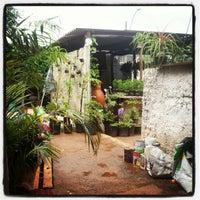 Photo taken at Ouro Verde Arte Jardim by Gino C. on 11/3/2012