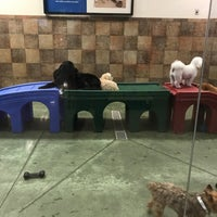 Photo taken at PetSmart by Sotheavy on 4/27/2017