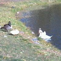 Photo taken at Lake LaVerne by Sam M. on 10/12/2012