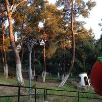 Photo taken at Teleferik Piknik Alanı by Merve I. on 5/15/2014