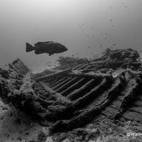8/25/2018 tarihinde Hasan K.ziyaretçi tarafından Barakuda Diving Center'de çekilen fotoğraf