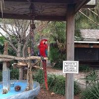Photo taken at Zoo World by Brady C. on 1/15/2013