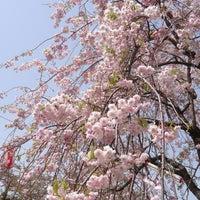 Photo taken at 青葉ヶ丘公園 by tsugaru751 on 5/6/2015