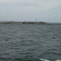 5/6/2018にさかなやが東京湾要塞 第二海堡跡で撮った写真